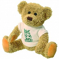 Korky Bear and T Shirt