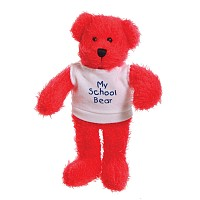 7 inch Oscar Bear and T Shirt