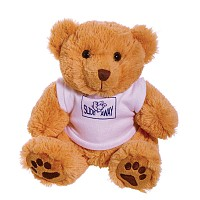 10 inch Dexter Bear and T Shirt